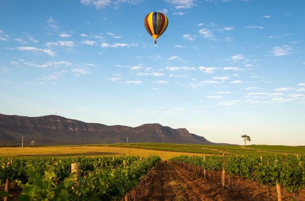 Hot air balloon floats over a Hunter Valley vineyard