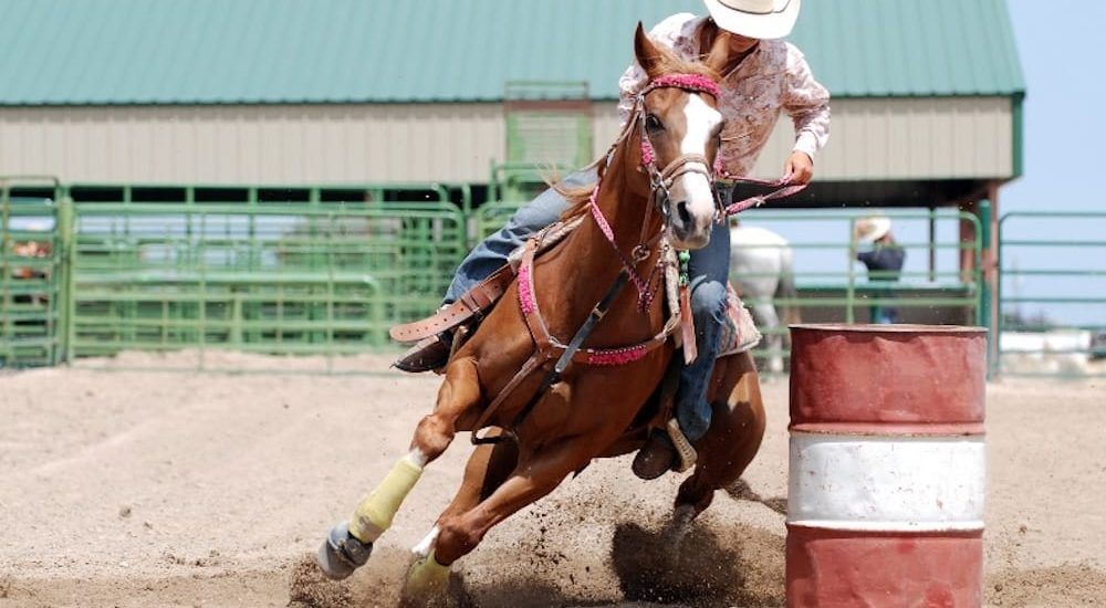 Barrel racing at the Upper Hunter show